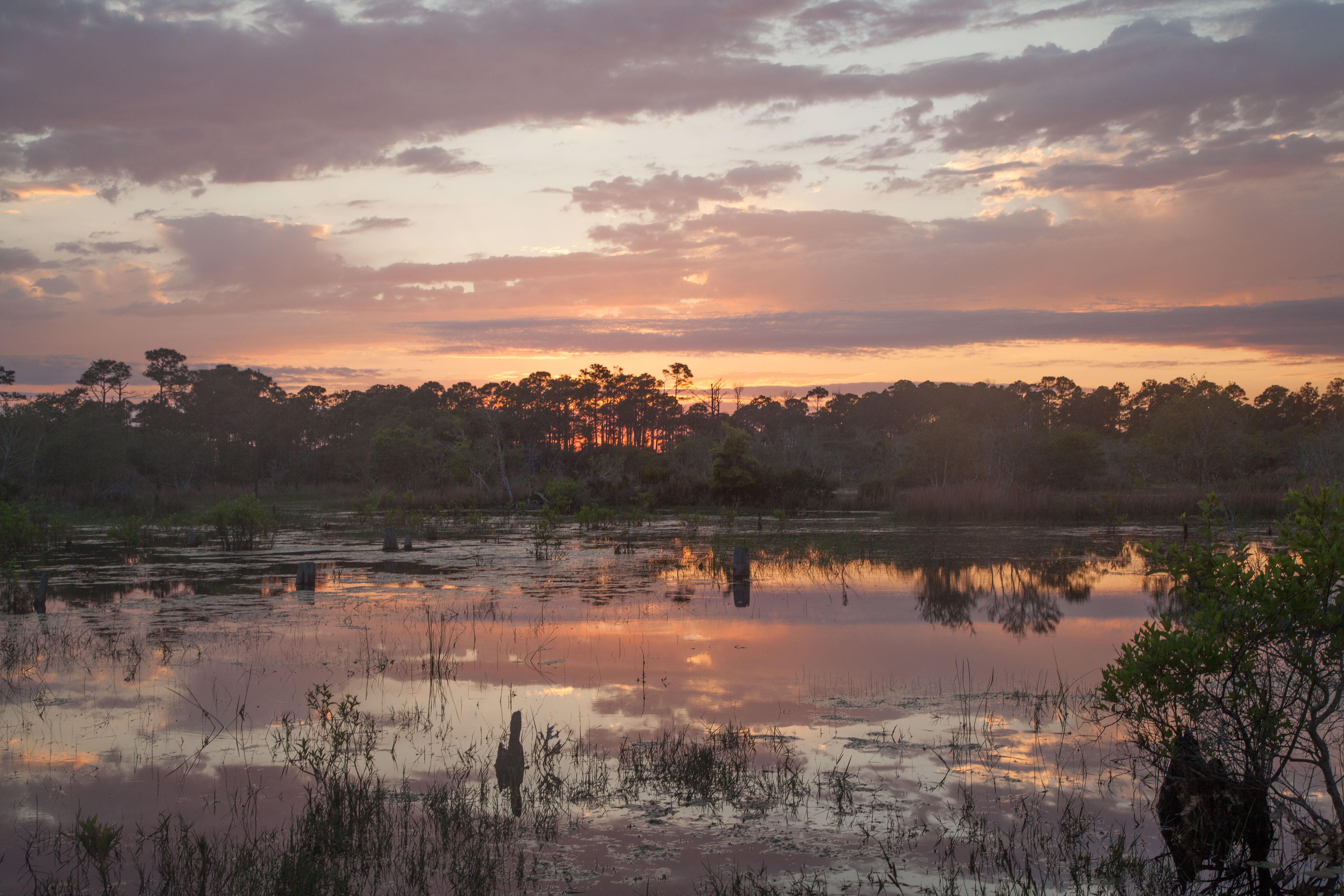 Photo of Choctawhatchee Bay Estuary at sunset